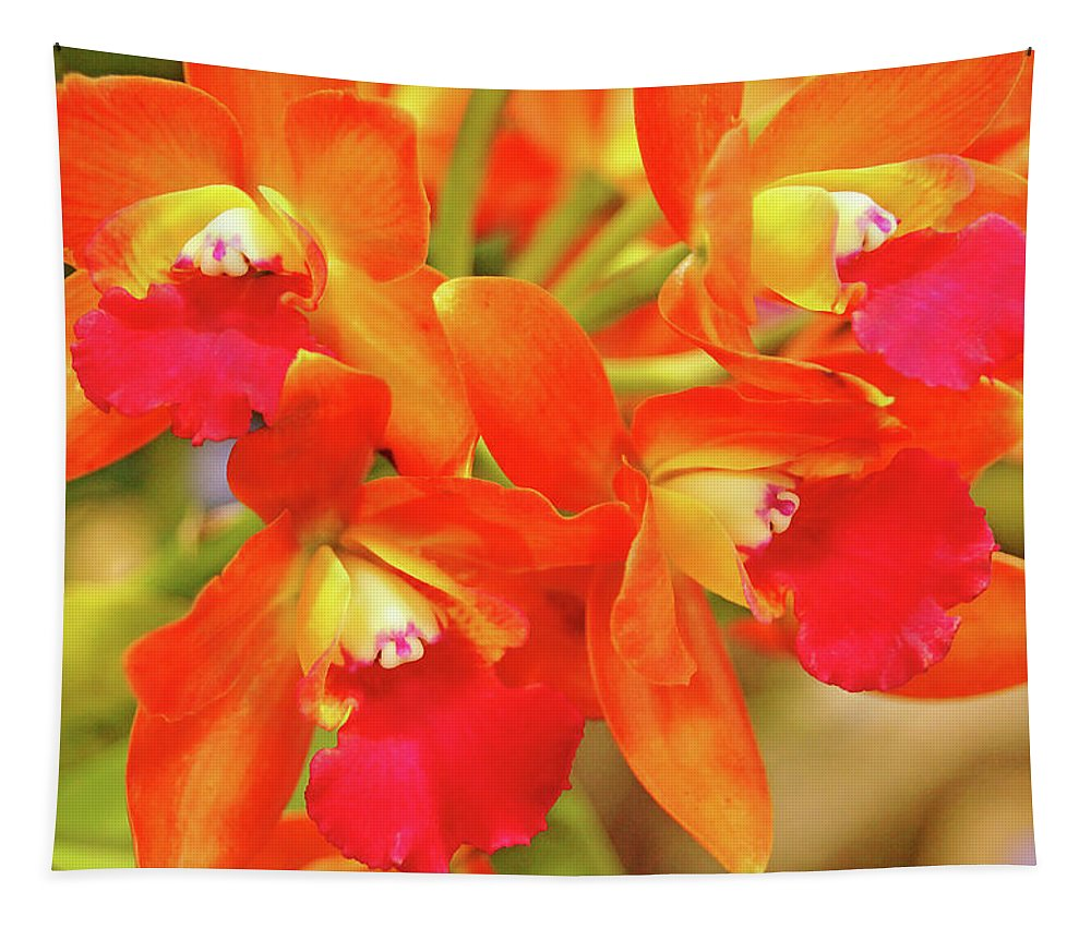 Orchids Tapestry featuring the photograph Orange Cattleya Orchid by Debbie Oppermann