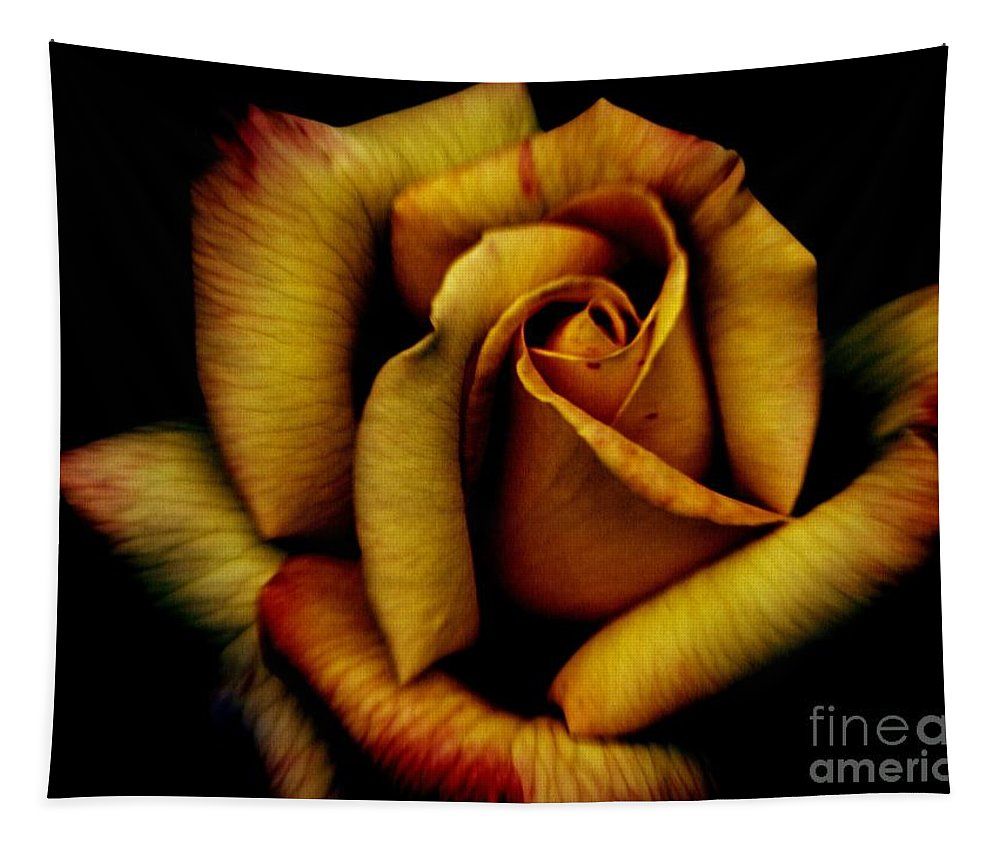 Rose Tapestry featuring the photograph Orange Delight by Charleen Treasures