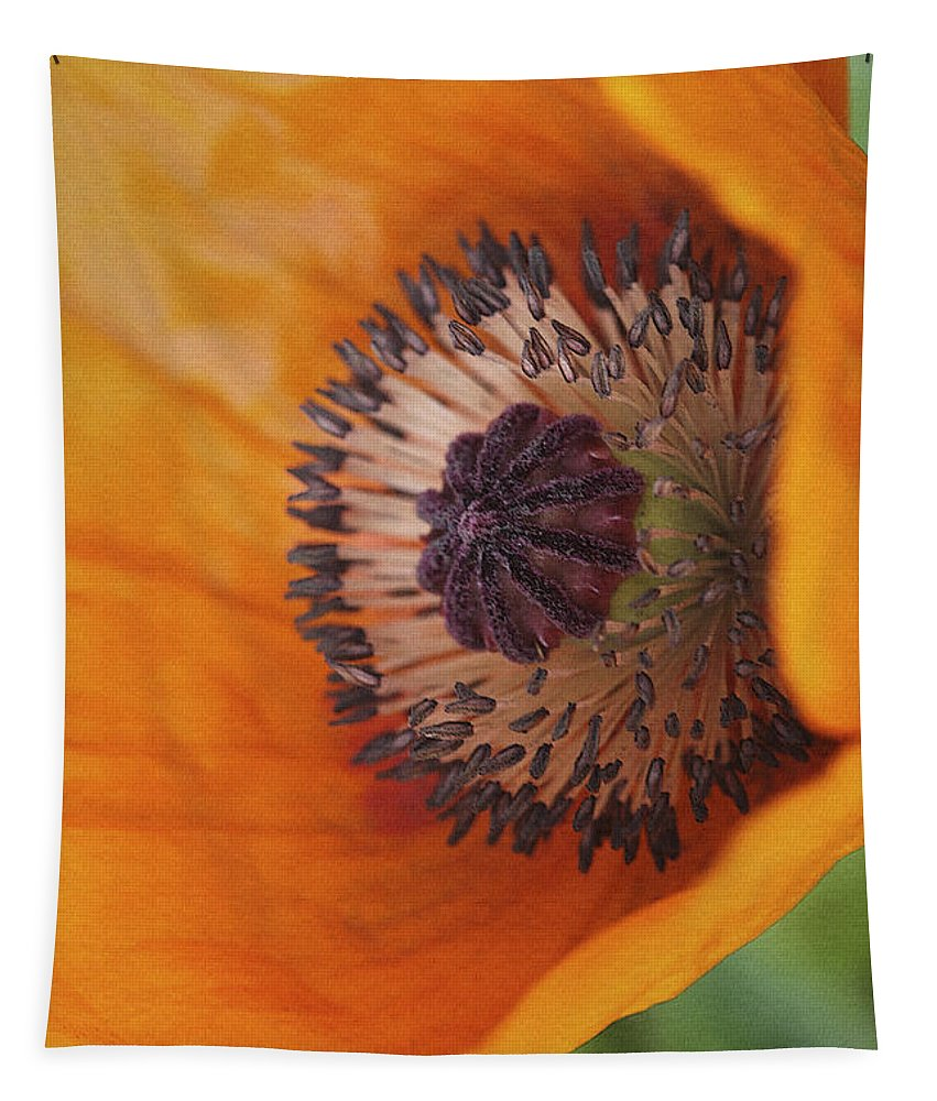 Flower Tapestry featuring the photograph Orange Poppy With Texture by Deborah Benoit