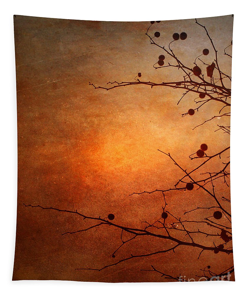 Orange Tapestry featuring the photograph Orange Simplicity by Tara Turner