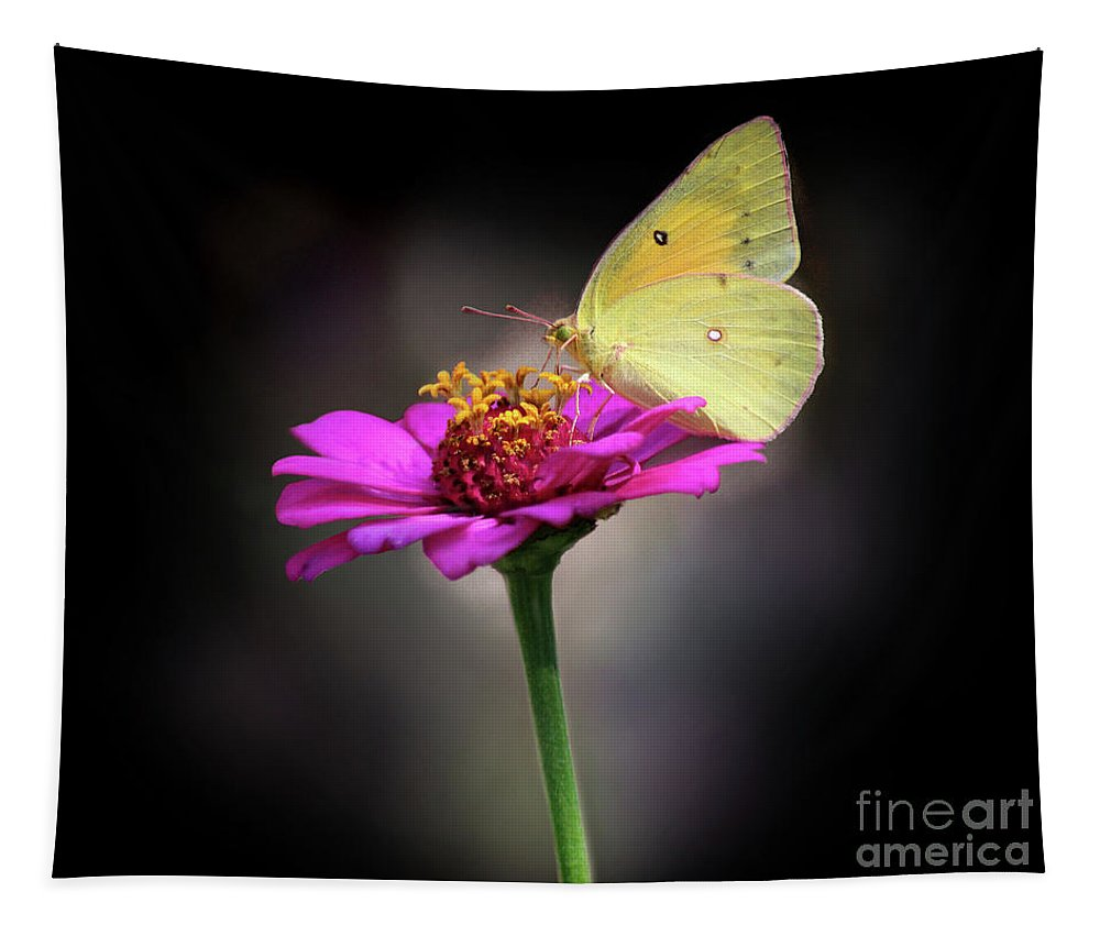 Butterfly Tapestry featuring the photograph Orange Sulphur Butterfly Portrait by Karen Adams