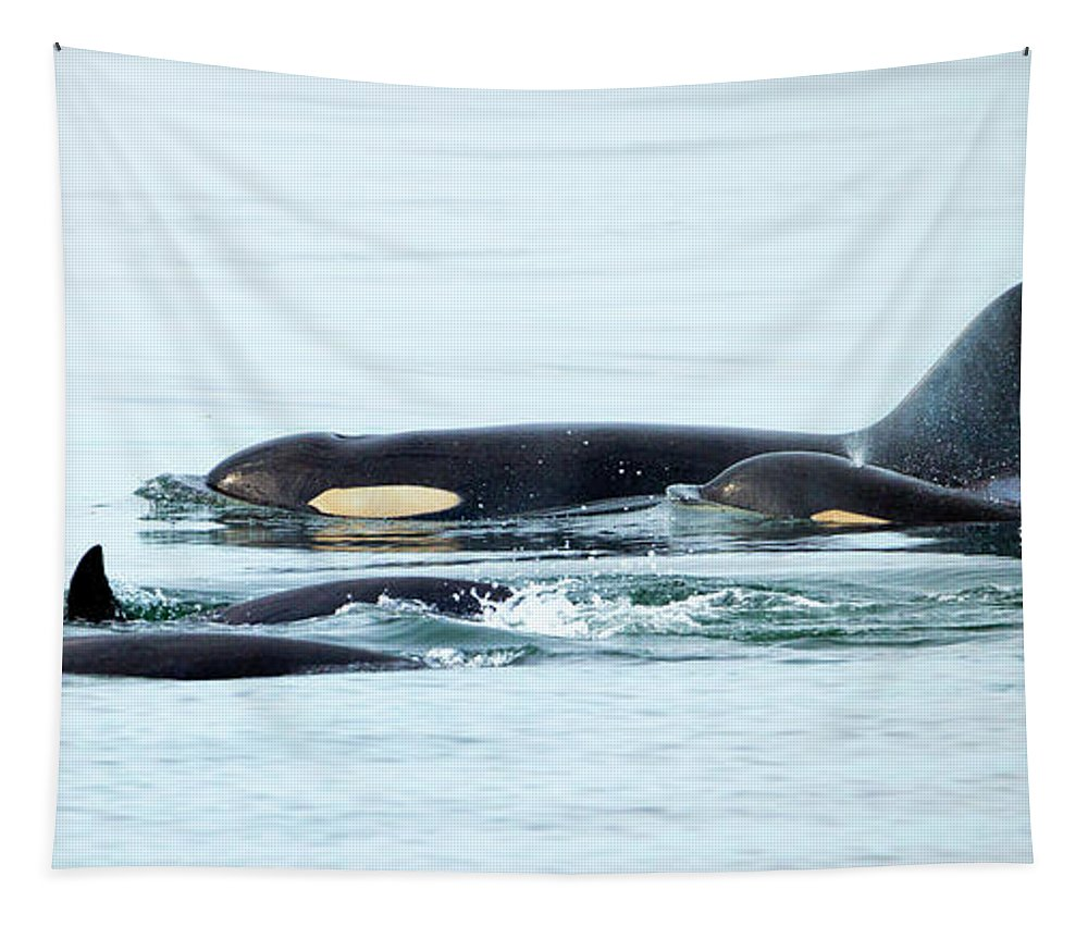 Orca Tapestry featuring the photograph Orca Family Photo by Mike Dawson
