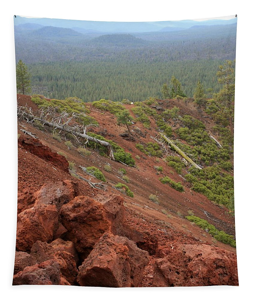 Oregon Tapestry featuring the photograph Oregon Landscape - Red Rocks At Lava Butte by Carol Groenen