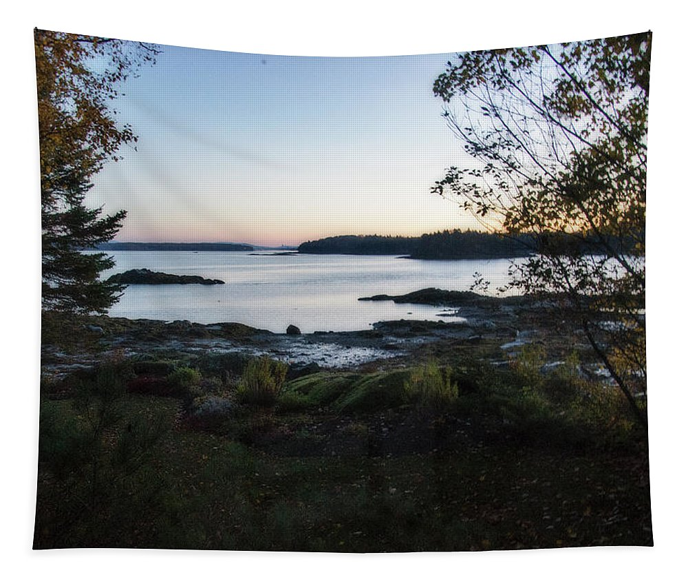 View Tapestry featuring the digital art Out My Window by Terry Davis