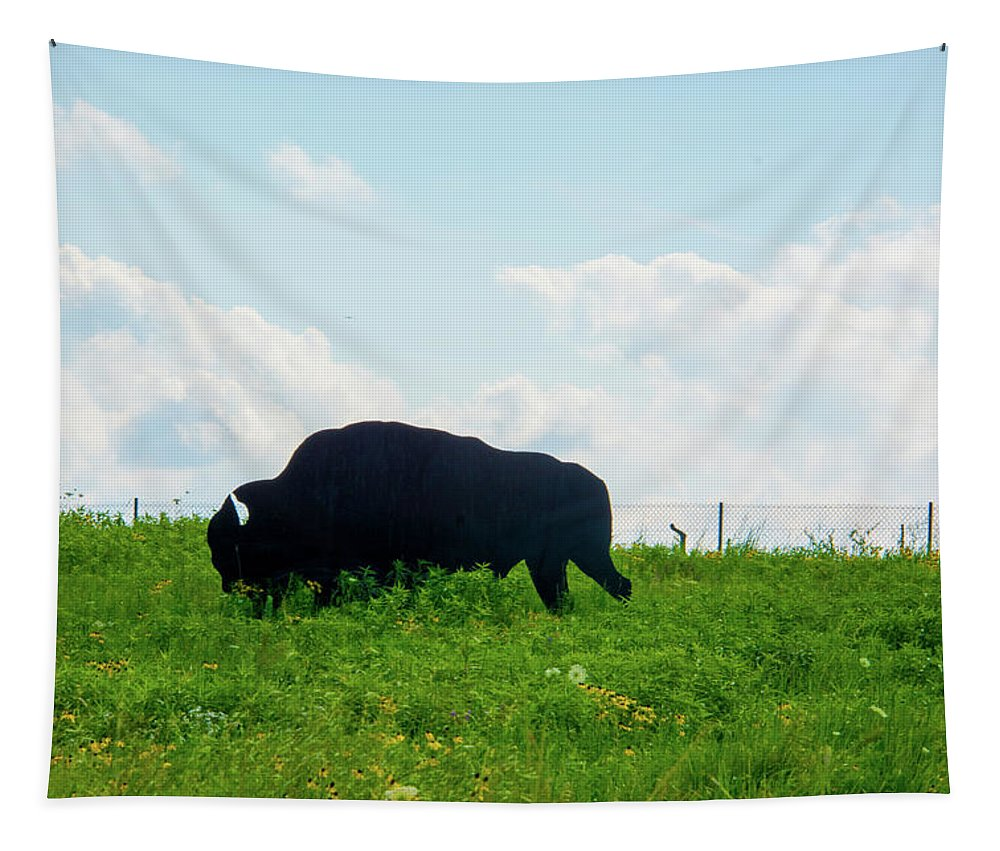 Missouri Tapestry featuring the photograph Out On The Range by Pamela Williams