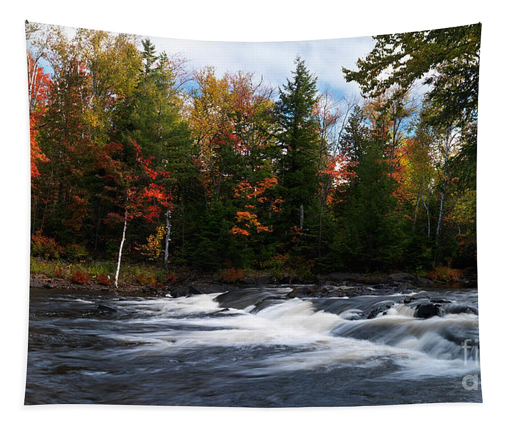 River Tapestry featuring the photograph Oxtongue River Ontario Autumn Scenery by Oleksiy Maksymenko
