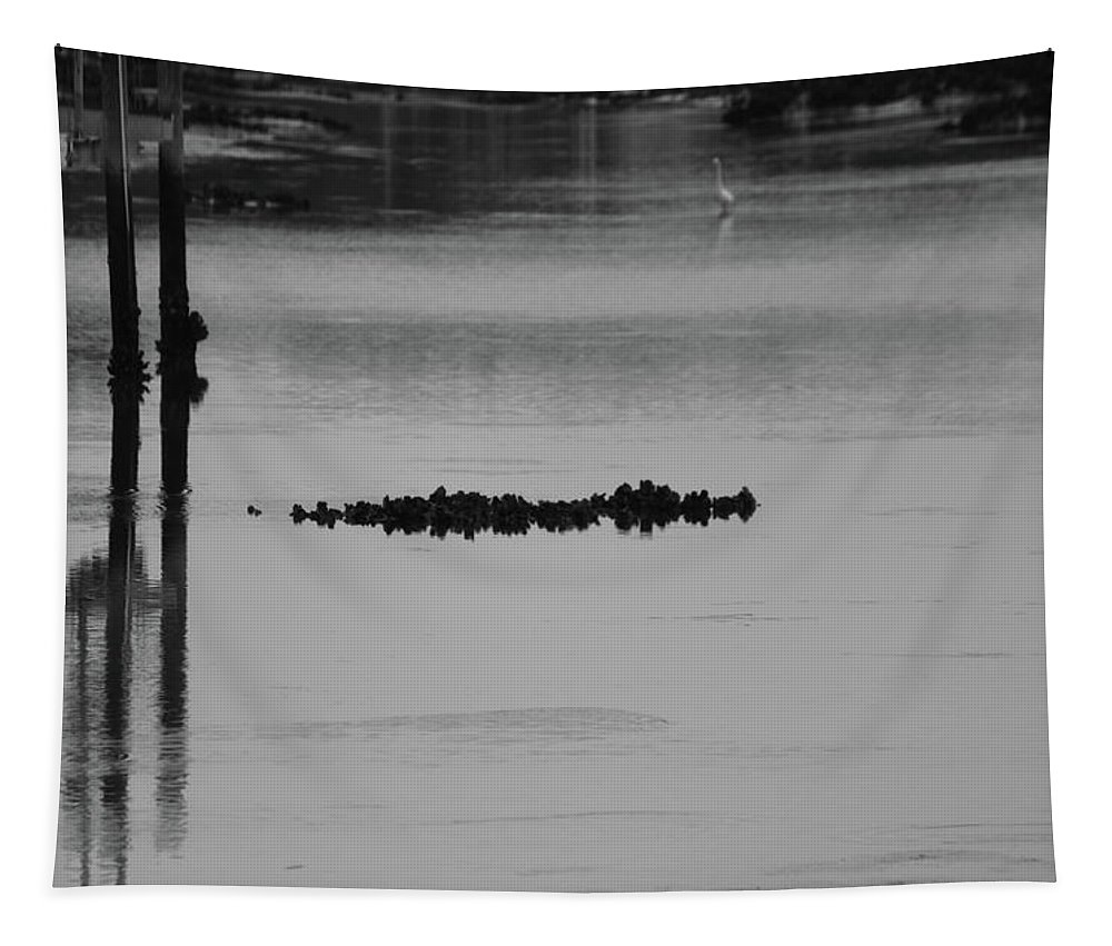 Shellfish Tapestry featuring the photograph Oyster Bed Gator by Cynthia Guinn