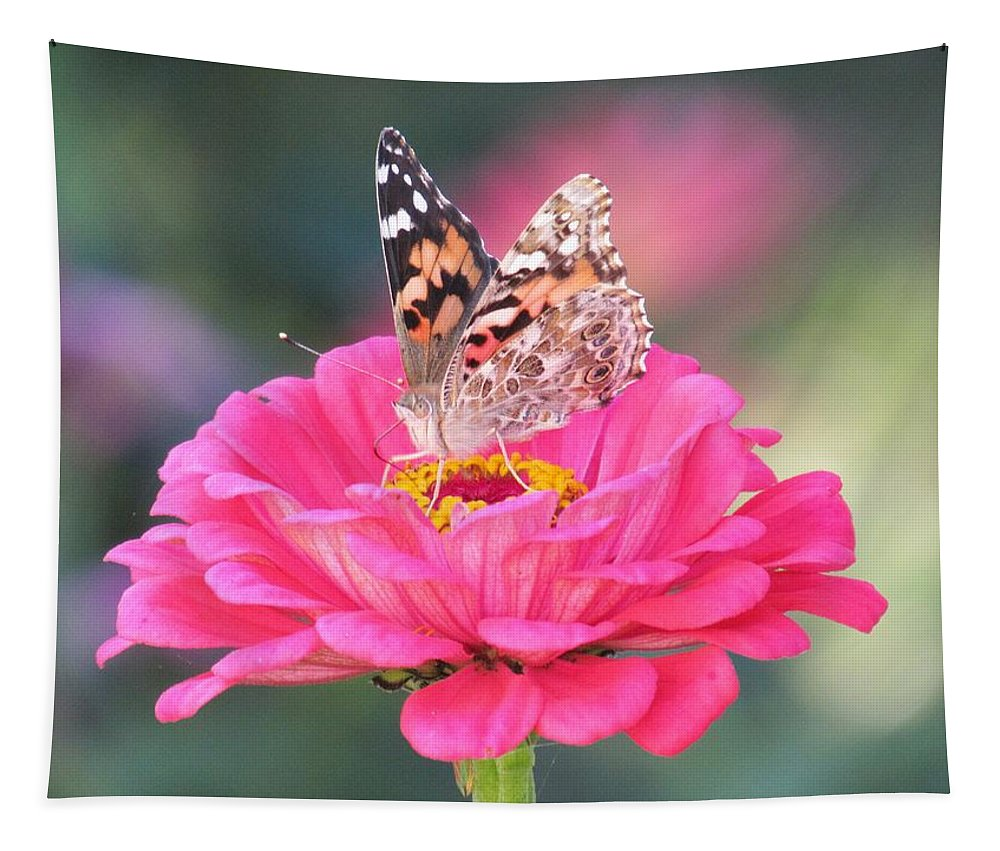 Lynne Miller Tapestry featuring the photograph Painted Lady On Red Zinnia 3 by Lynne Miller