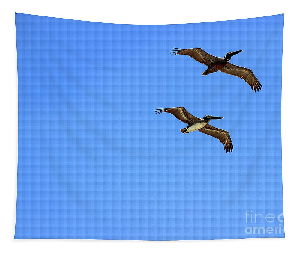 Pelicans Tapestry featuring the photograph Pair Of Pelicans by Karen Adams