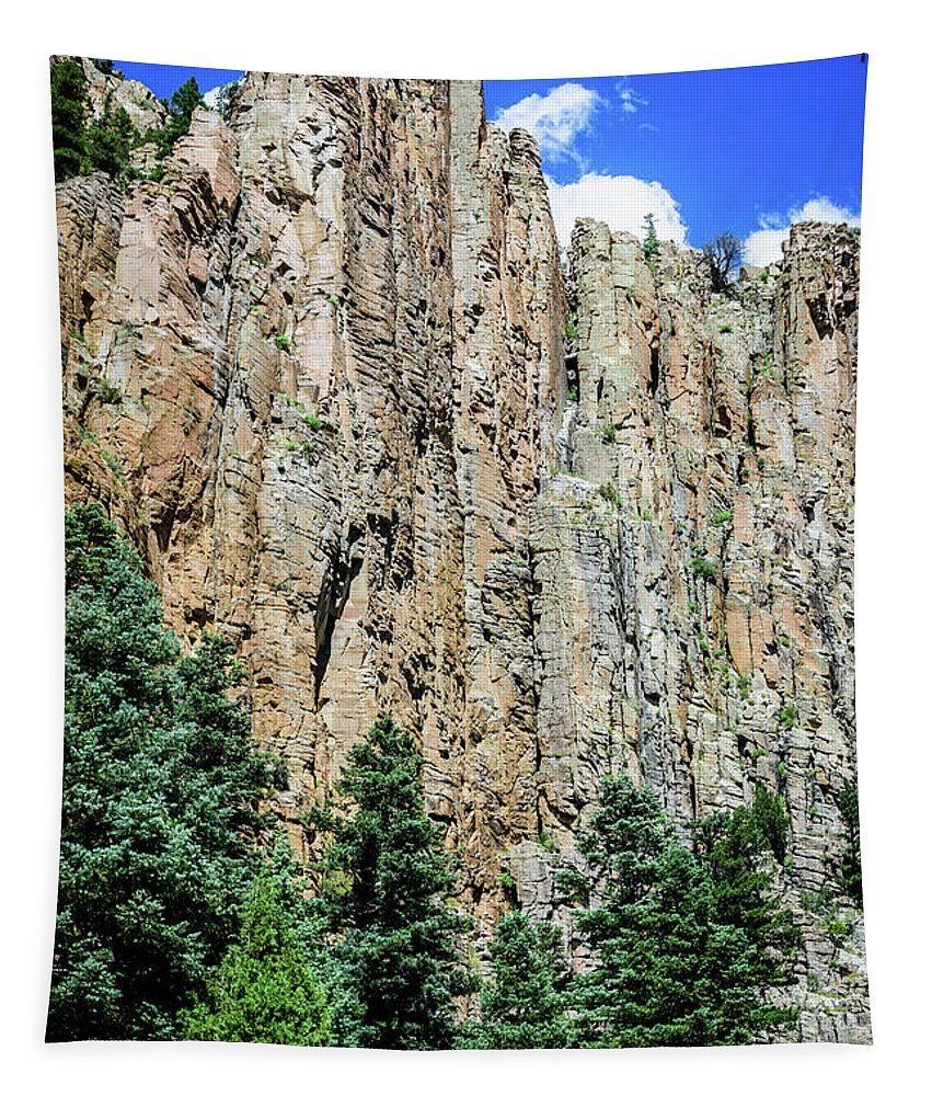 Palisades - Cimarron Canyon State Park - New Mexico Tapestry featuring the photograph Palisades - Cimarron Canyon State Park - New Mexico by Debra Martz