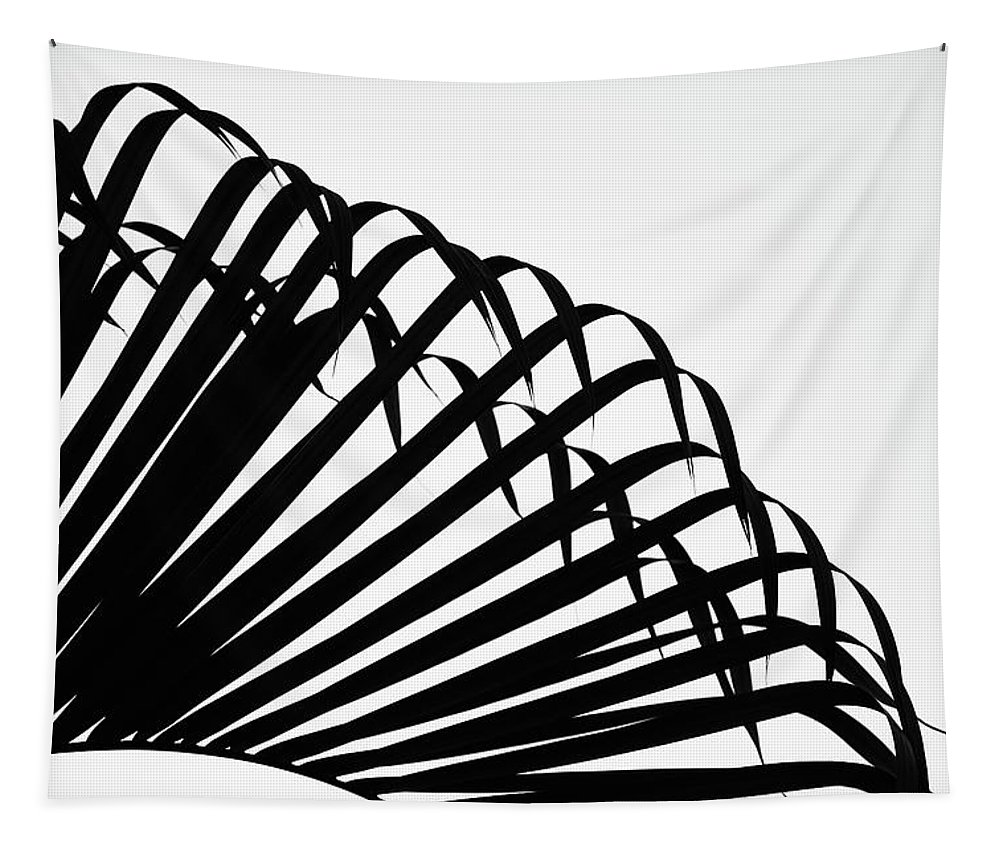 Black And White Tapestry featuring the photograph Palm Frond Black And White by Christopher Johnson