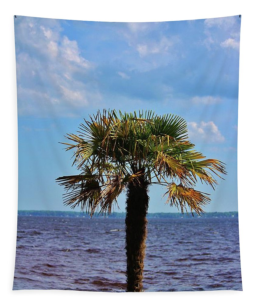 Palm Tree Tapestry featuring the photograph Palm Tree By The Lake by Cynthia Guinn