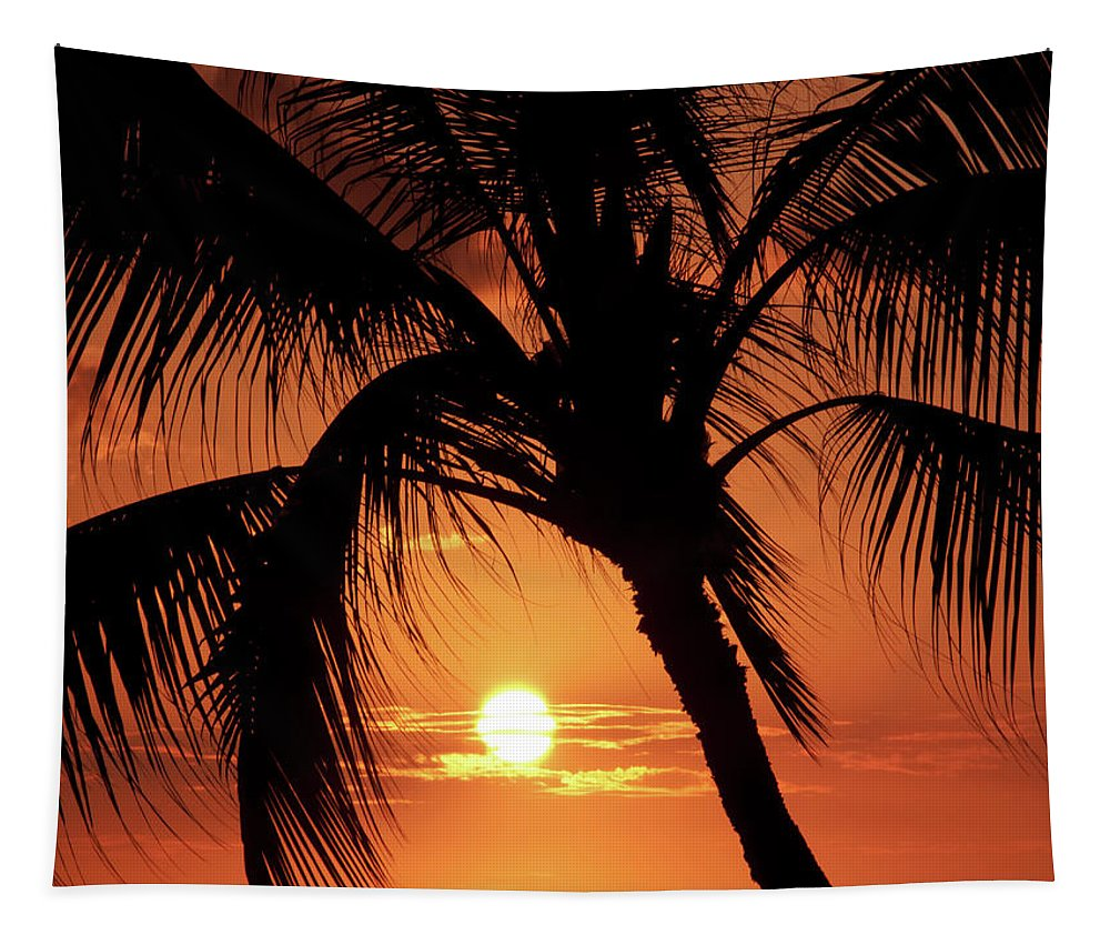 Palm Tree Tapestry featuring the photograph Palm Tree Silhouette by Christopher Johnson