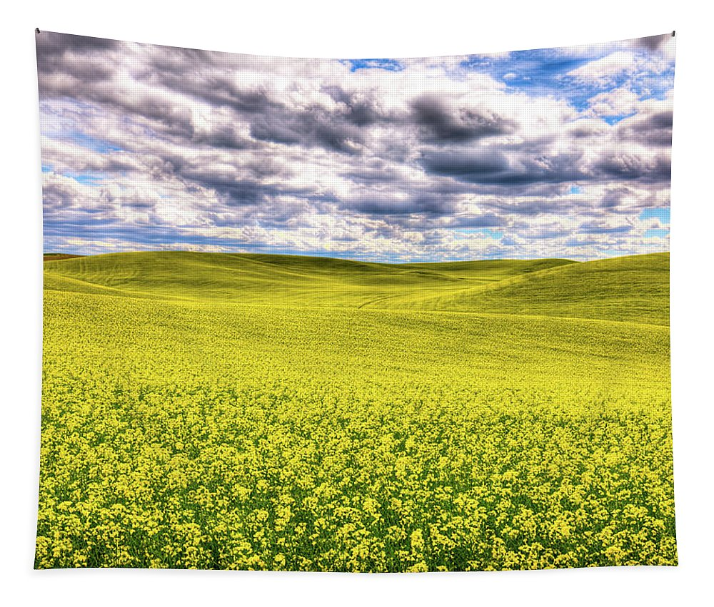 Palouse Hills Canola Tapestry featuring the photograph Palouse Hills Canola by David Patterson