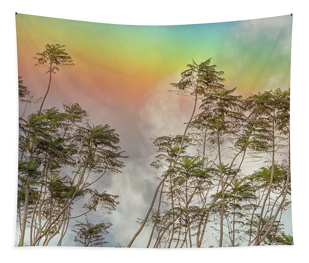 Rainbow Tapestry featuring the photograph Panama Rainbow by Mike Braun