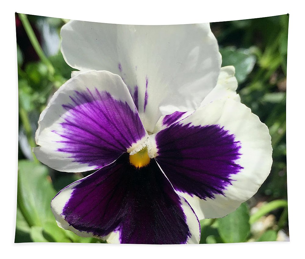 Pansy Tapestry featuring the photograph Pansy by James Pinkerton