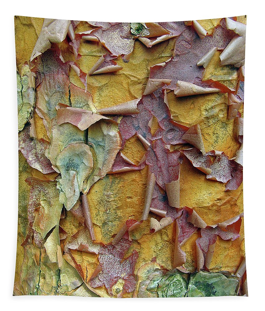 Tree Tapestry featuring the photograph Paperbark Maple Tree by Jessica Jenney