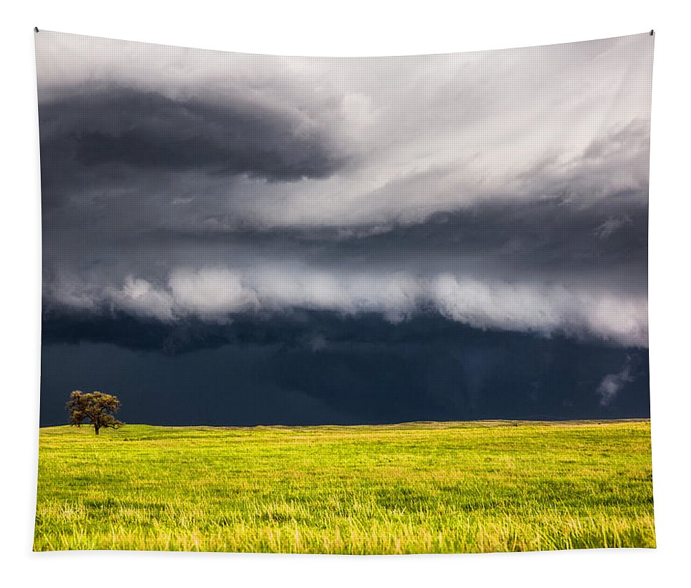 Storm Tapestry featuring the photograph Passing By - Storm Passes By Lone Tree In Western Nebraska by Southern Plains Photography