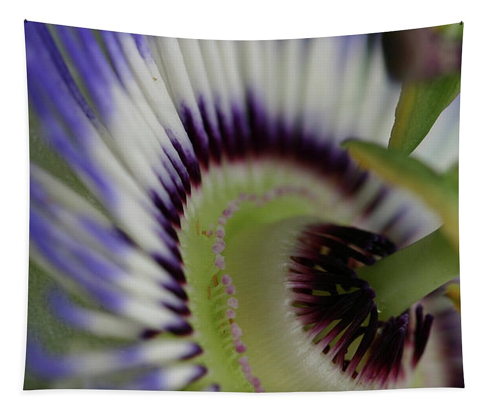 Passion Flower Tapestry featuring the photograph Passion Flower by Michael Munster