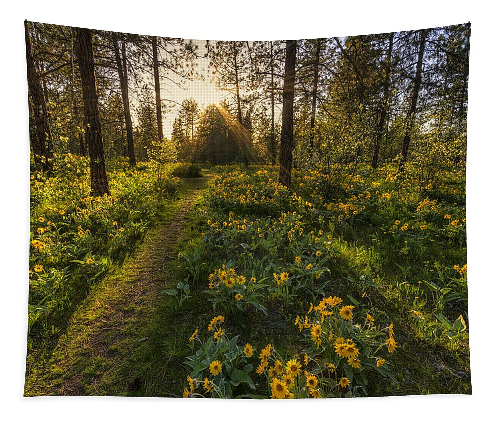 Hamblen Park Tapestry featuring the photograph Path To The Golden Light by Mark Kiver