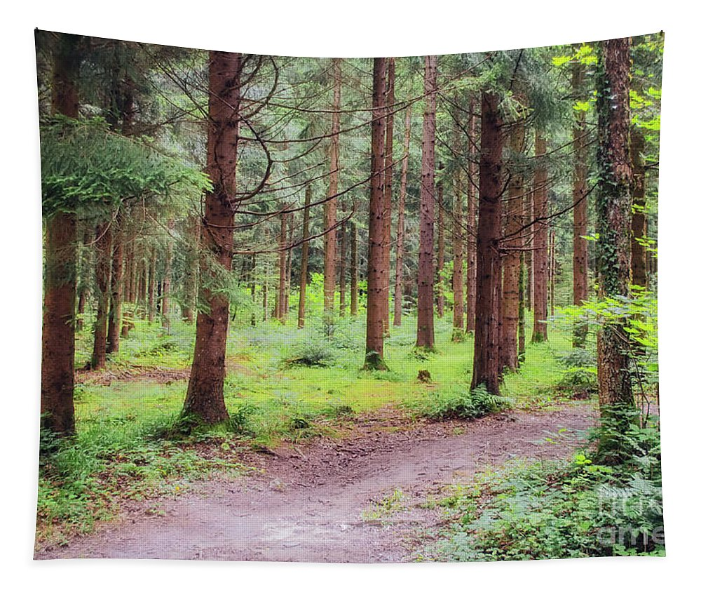 Michelle Meenawong Tapestry featuring the photograph Pathway In The Forest by Michelle Meenawong