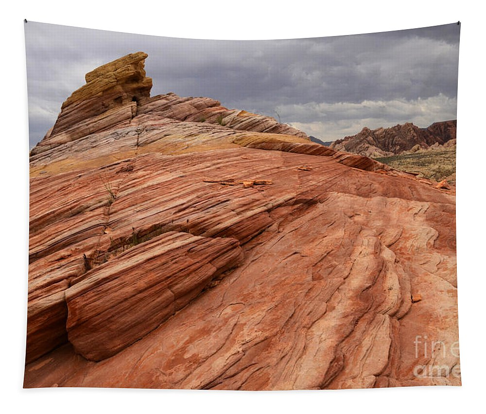 Nevada Tapestry featuring the photograph Patterns 2 by Bob Christopher
