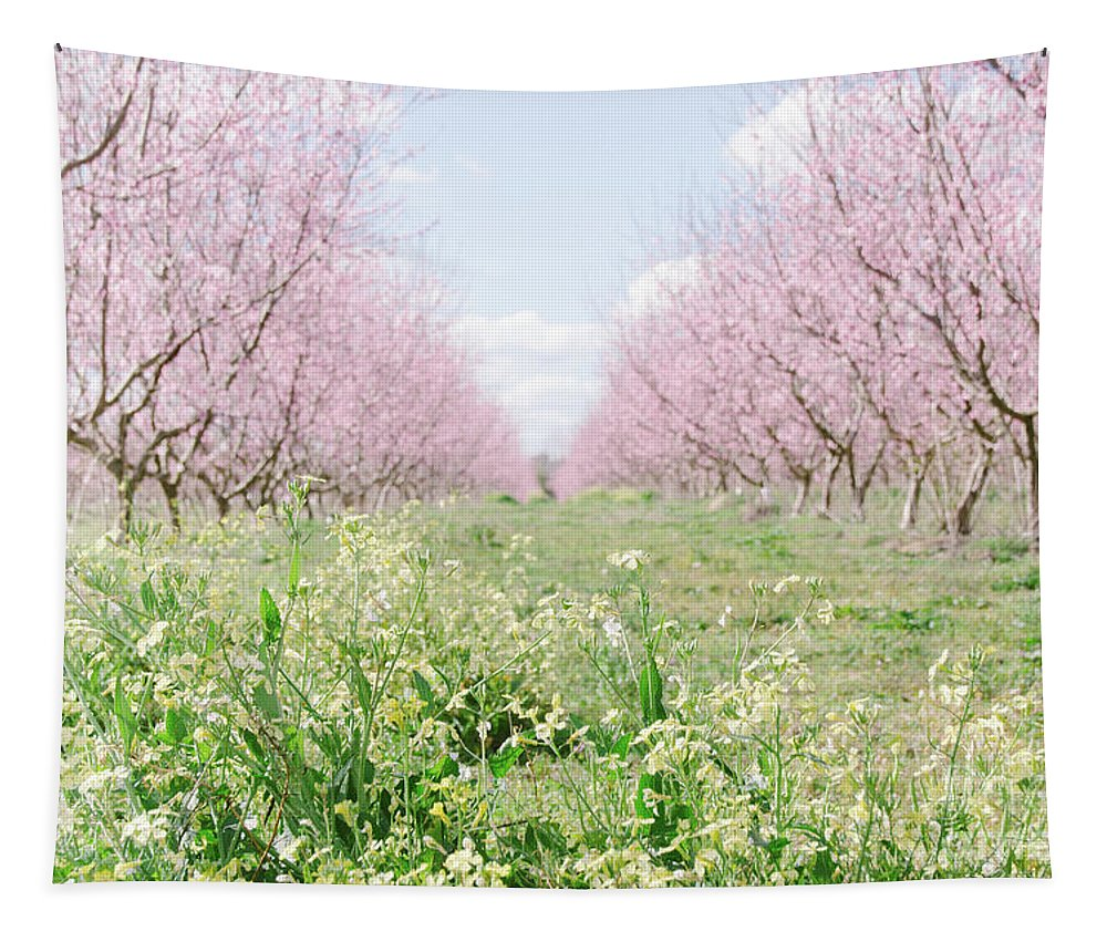 Tapestry featuring the photograph Peach Orchard 4 by Andrea Anderegg