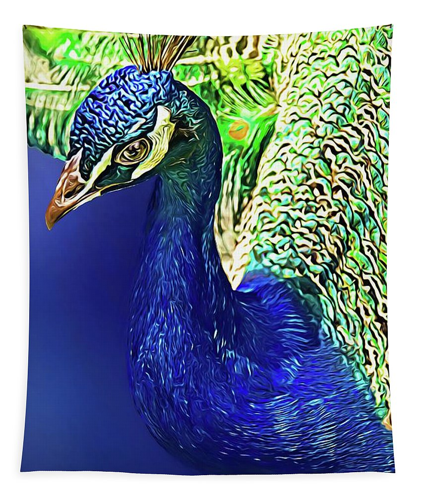 Alicegipsonphotographs Tapestry featuring the photograph Peacock Blued by Alice Gipson