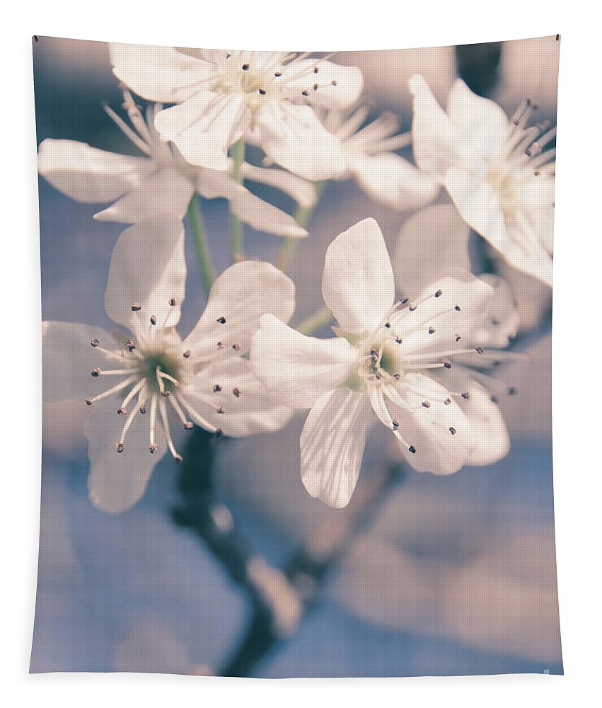 Sakura Tapestry featuring the photograph Pear Blossoms 4 by Andrea Anderegg