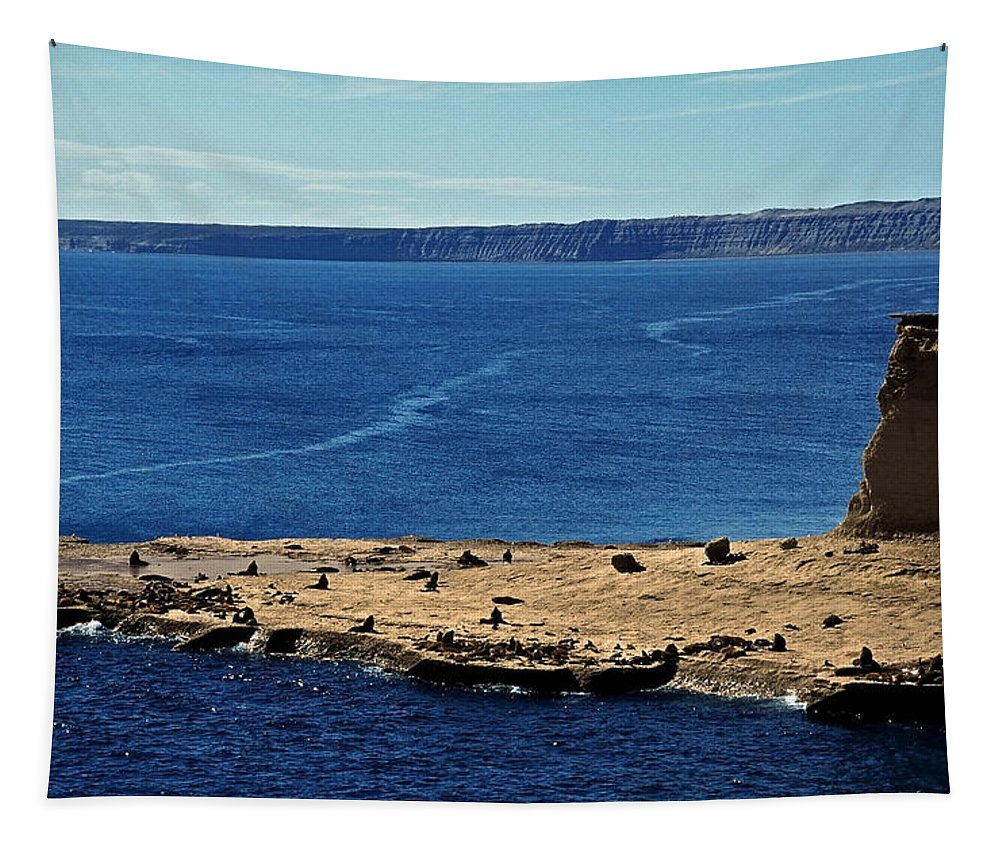 South America Tapestry featuring the photograph Peninsula De Valdez by Juergen Weiss