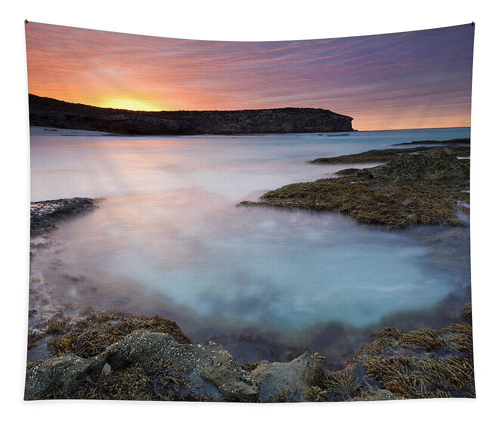 Dawn Tapestry featuring the photograph Pennington Dawn by Mike Dawson