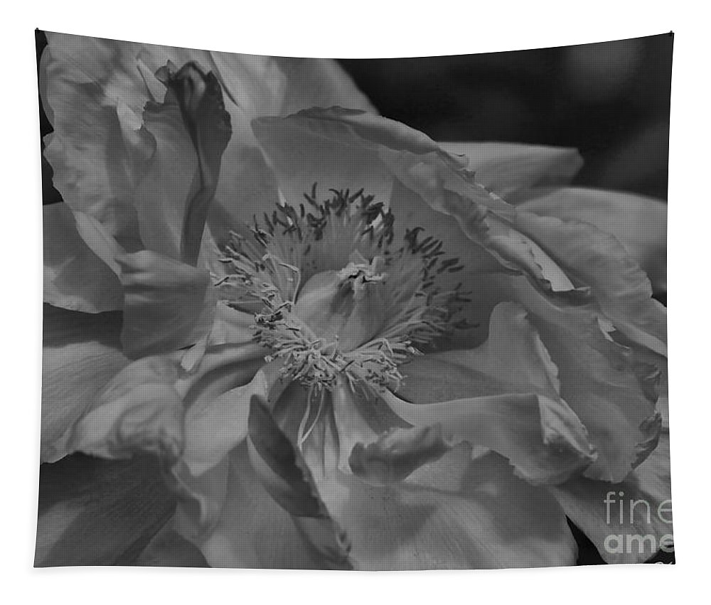 Peonie Tapestry featuring the photograph Peonie In Bw by Deborah Benoit