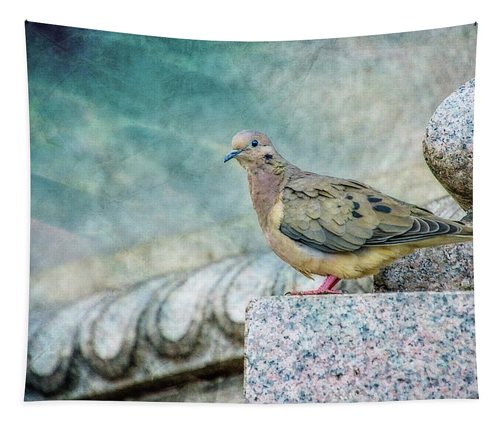 Photography Tapestry featuring the digital art Perched by Terry Davis