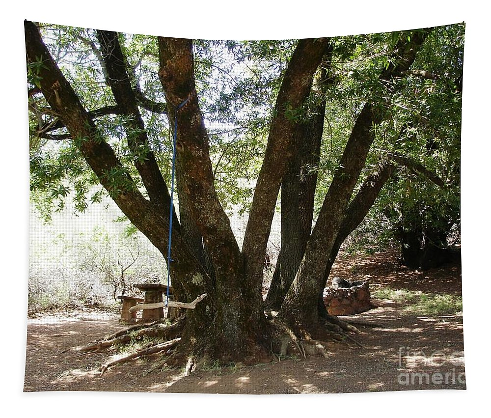 Picnic Tapestry featuring the photograph Perfect Picnic Tree by Carol Groenen