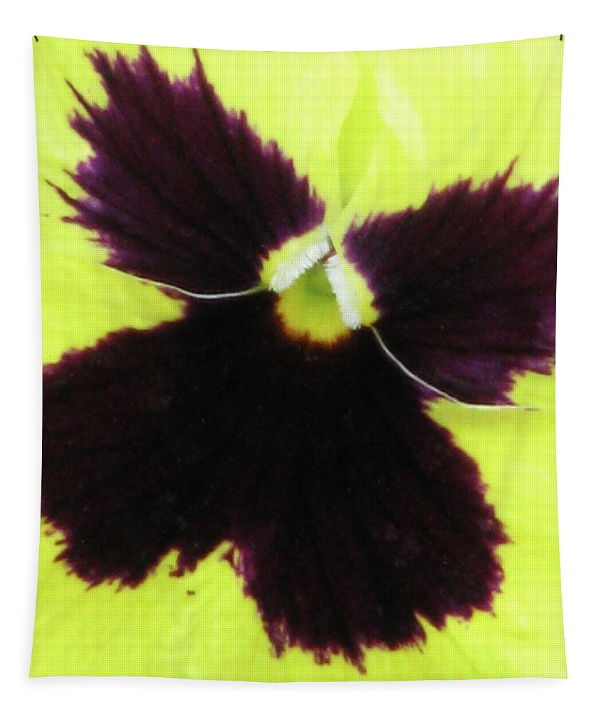 Pansy Tapestry featuring the photograph Perfectly Pansy 05 by Pamela Critchlow