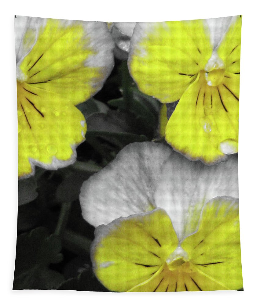 Pansy Tapestry featuring the photograph Perfectly Pansy 13 - Bw - Yellow by Pamela Critchlow