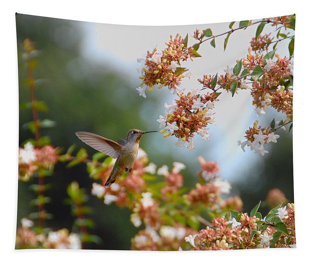 Hummers Tapestry featuring the photograph Perfectly Peach by Lynn Bauer