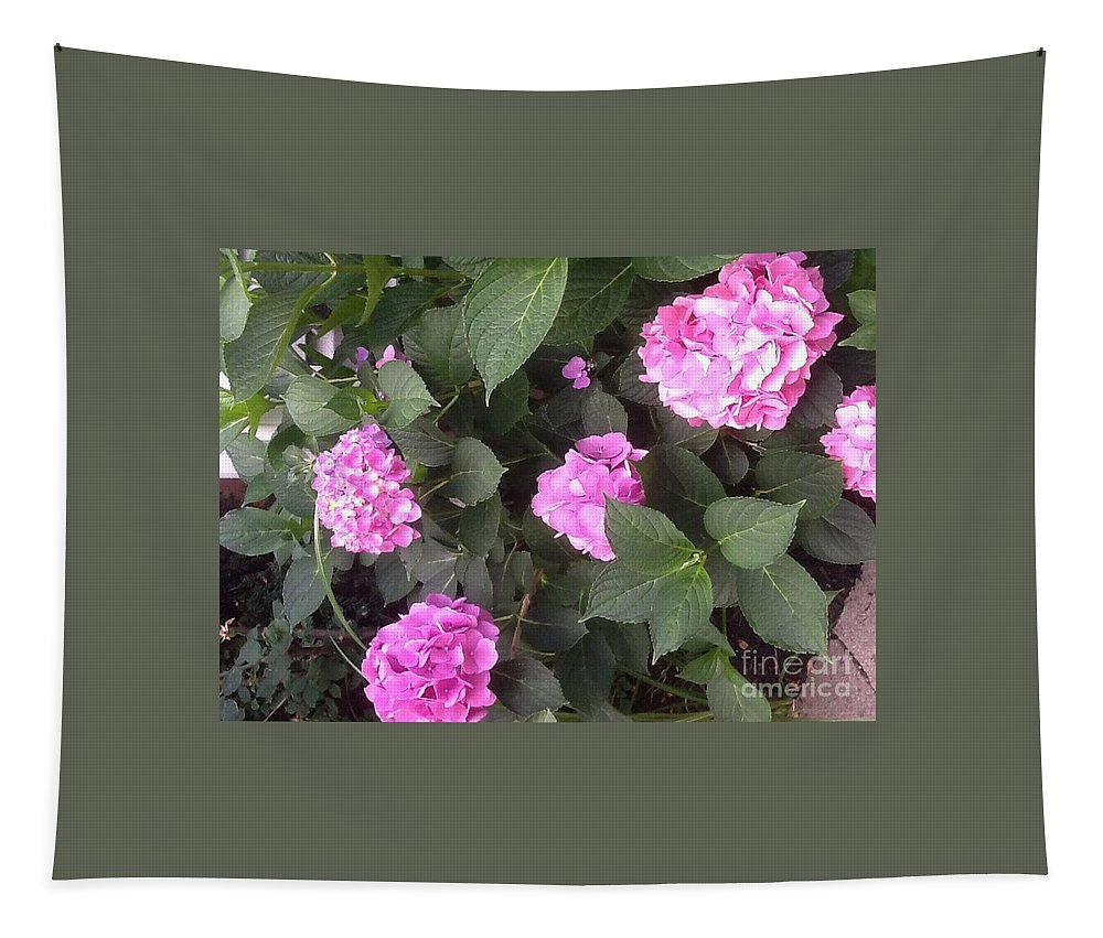 Hydrangea Tapestry featuring the photograph Perfectly Pink by Gina Sullivan