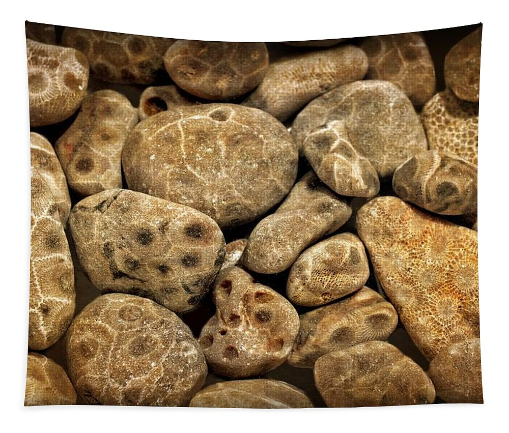 Stone Tapestry featuring the photograph Petoskey Stones Vlll by Michelle Calkins