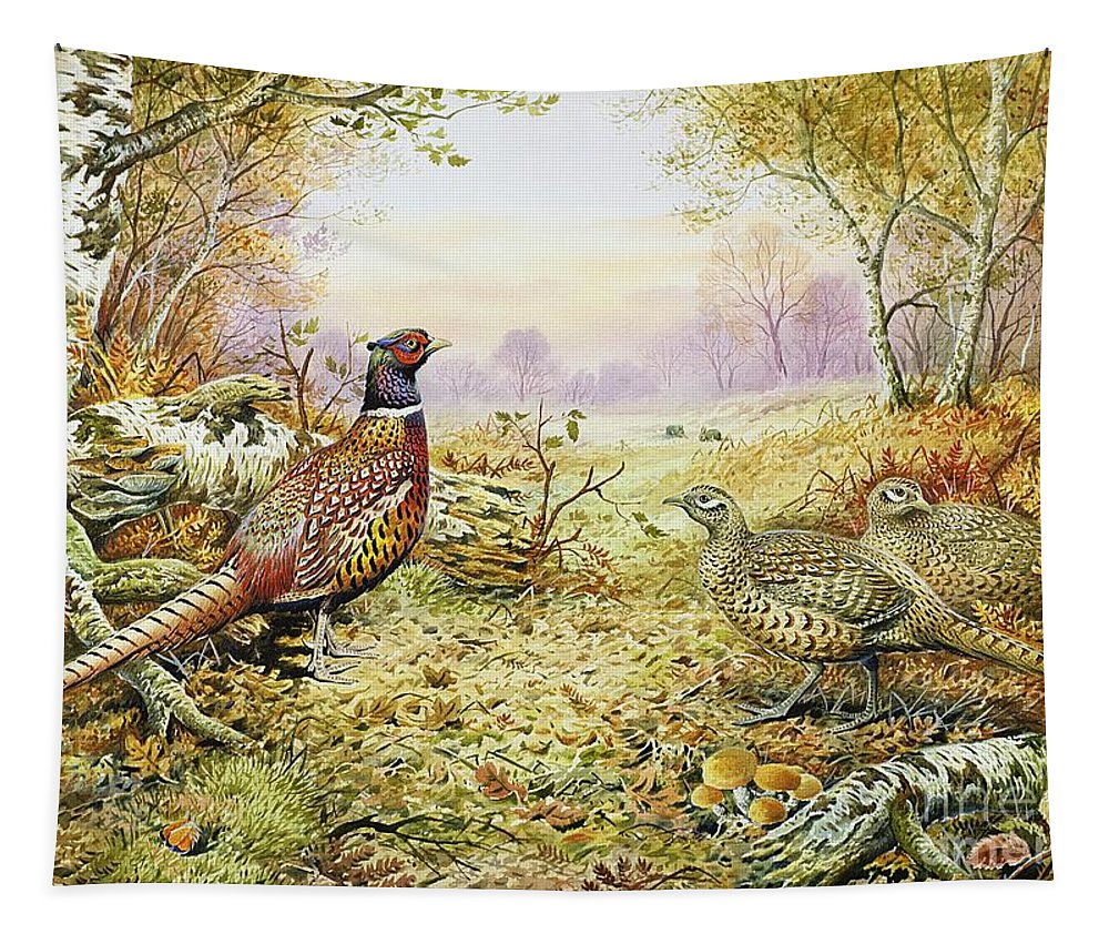 Fungus; Game Bird; Bracken; Rabbits; Pheasant; Pheasants; Tree; Trees; Grass; Leafs; Animals Tapestry featuring the painting Pheasants In Woodland by Carl Donner