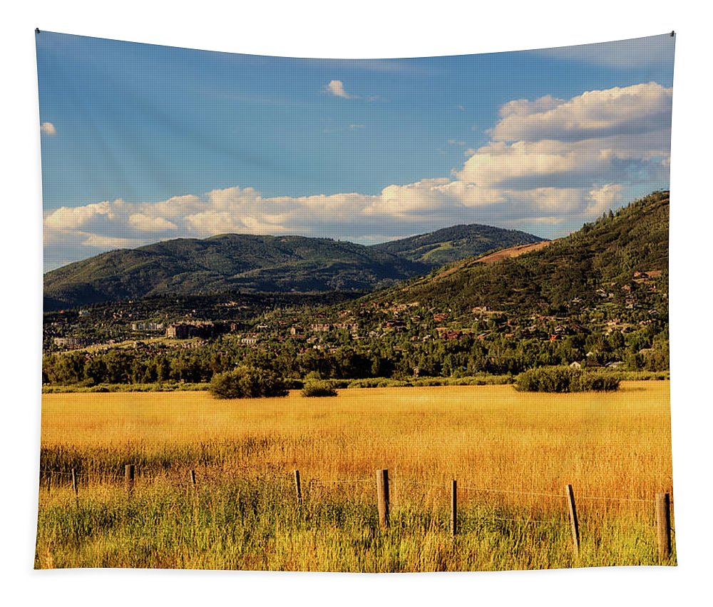 Steamboat Springs Tapestry featuring the photograph Picturesque View Of Steamboat Springs Colorado by Mountain Dreams