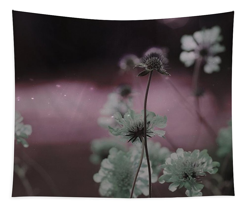 Scabious Tapestry featuring the photograph Pincushion Pink Invasion by Gothicrow Images