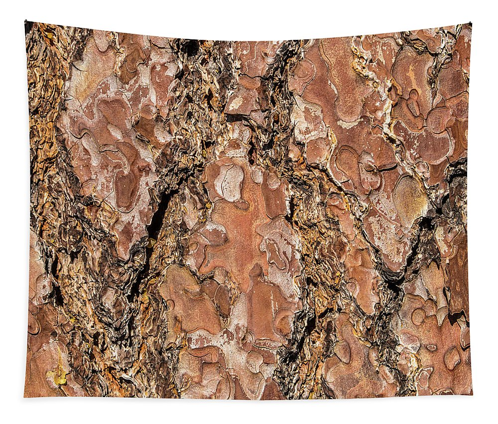 Abstract Tapestry featuring the photograph Pine Bark by Marv Vandehey