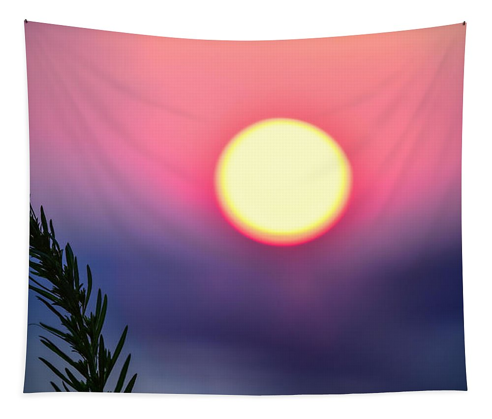 Pine Branch Tapestry featuring the photograph Pining On The Rise by Dave Kinsey