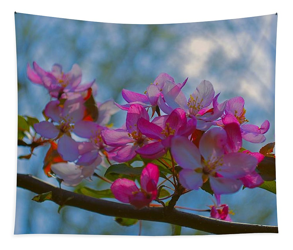 Crab Tapestry featuring the photograph Pink And Blue by Bonfire Photography