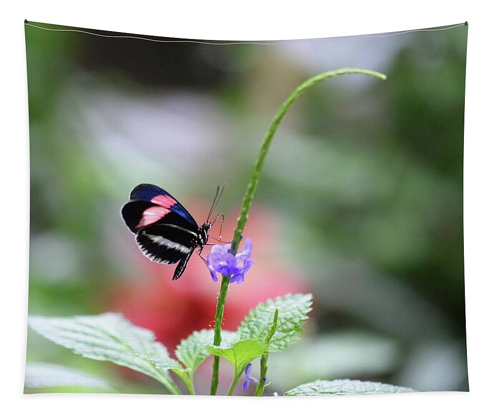 Bug Tapestry featuring the photograph Pink And Blue Butterfly by Barbara Treaster