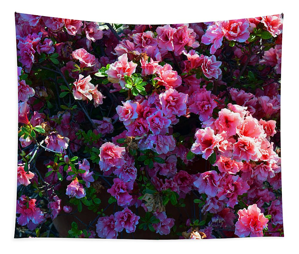 Pink Azaleas Tapestry featuring the photograph Pink Azaleas by Frank Wilson