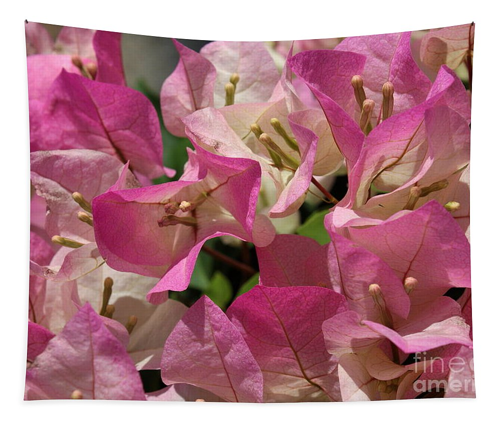 Pink Tapestry featuring the photograph Pink Bougainvillea by Carol Groenen