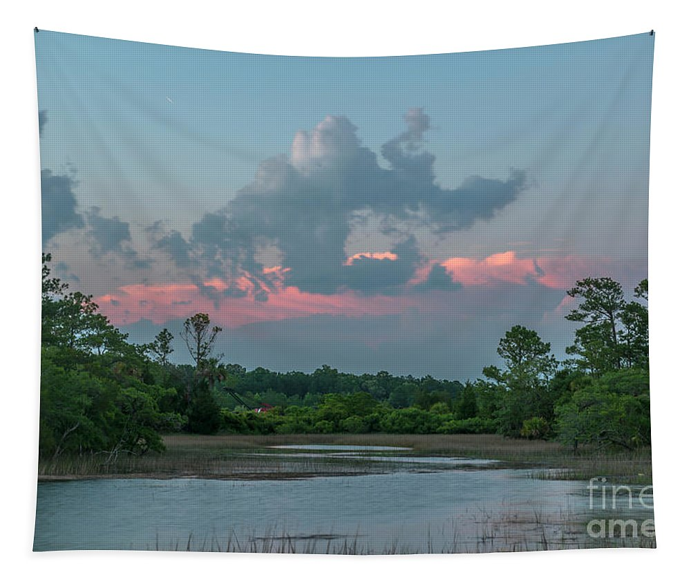 Suinset Tapestry featuring the photograph Pink Clouds by Dale Powell