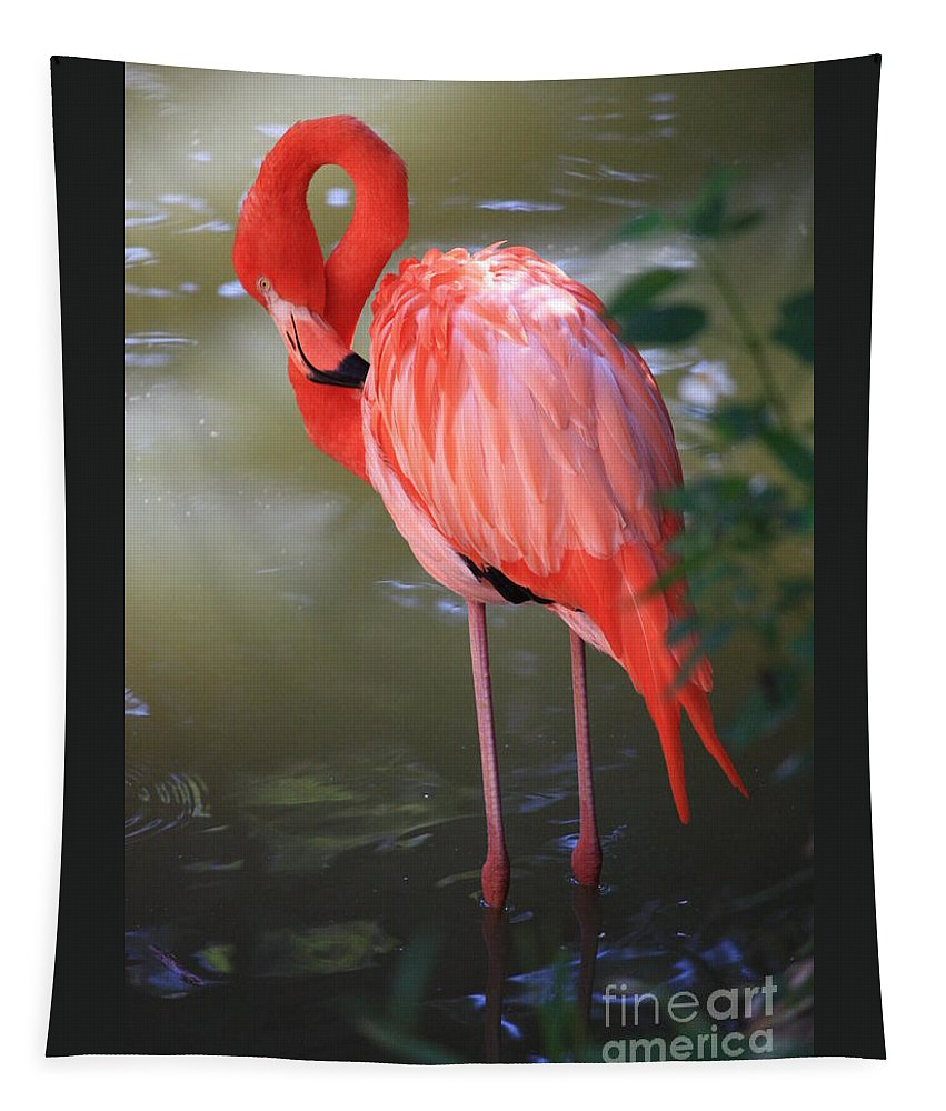 Flamingo Tapestry featuring the photograph Pink Flamingo by Carol Groenen